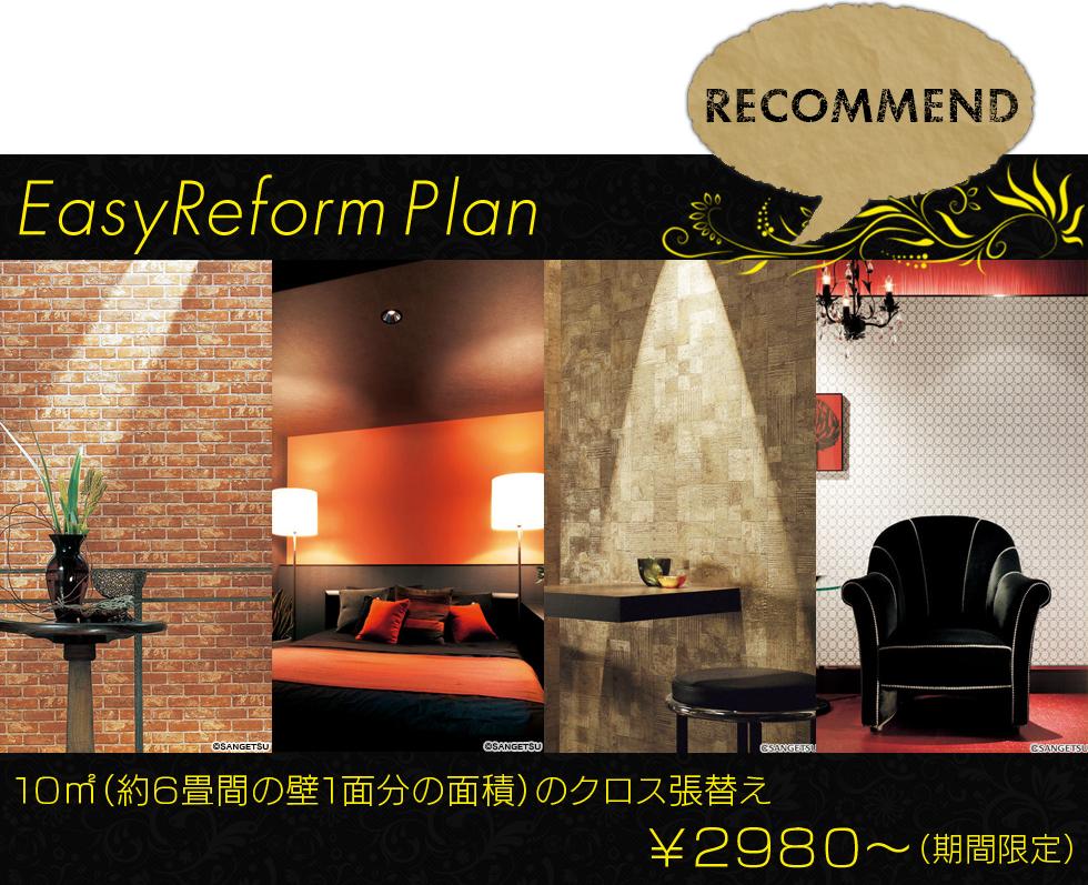 EasyReform Plan